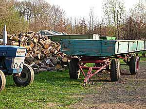 brennholz aus polen