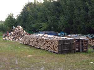 Brennholztrockung auf Europaletten