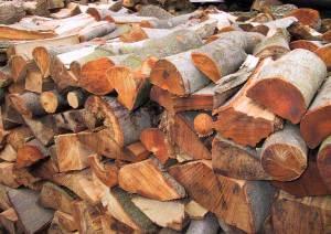 Buchenholz ist erste Wahl beim Heizen mit dem Kamin