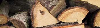 eiche brennholz ist eichenholz dass ideale und beste. Black Bedroom Furniture Sets. Home Design Ideas