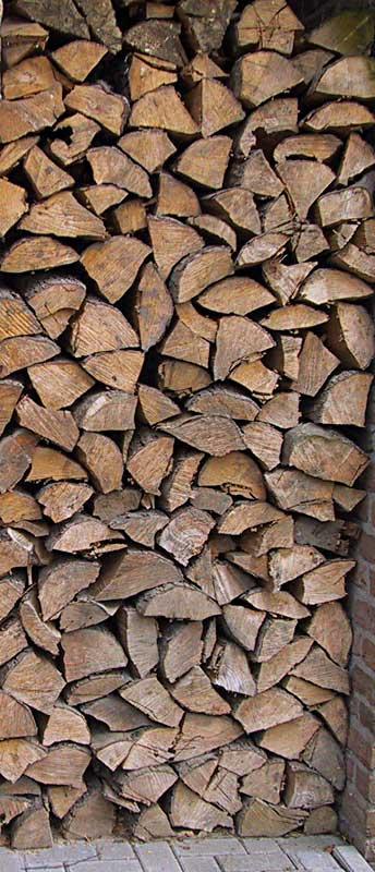 Erlenholz Die Erle Als Preiswerter Brennholz Lieferant