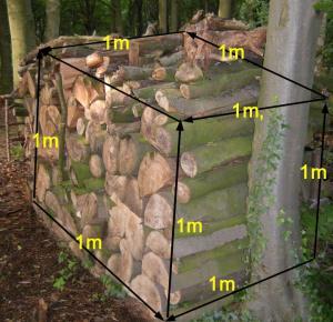 Ein Ster / Raummeter Brennholz